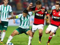 Palmeiras – Flamengo  Betting Picks 14 June 2018