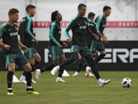 World Cup Picks Portugal – Spain 15/06